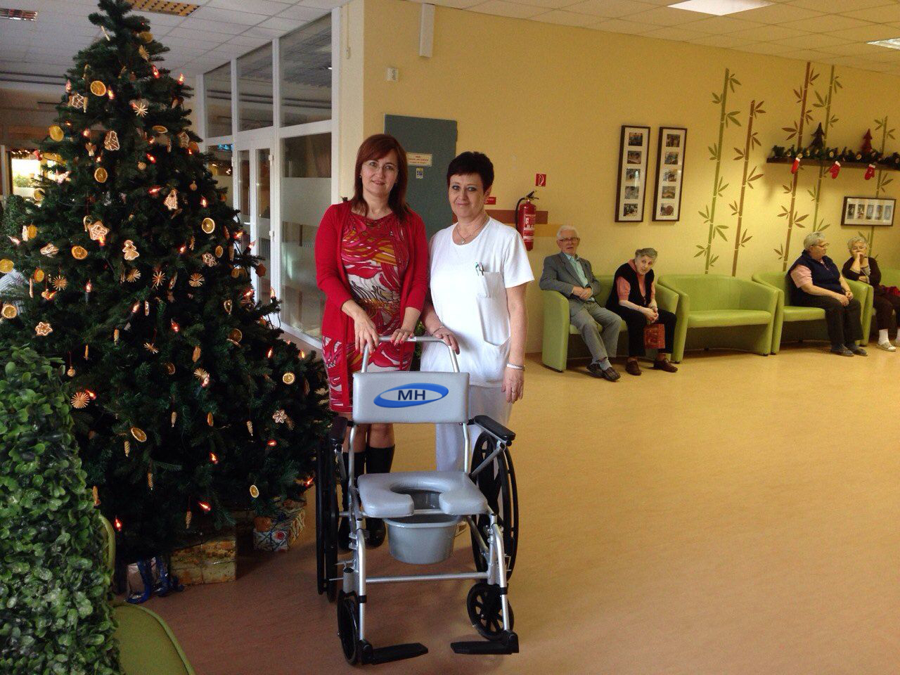 Wheelchair for Hospice